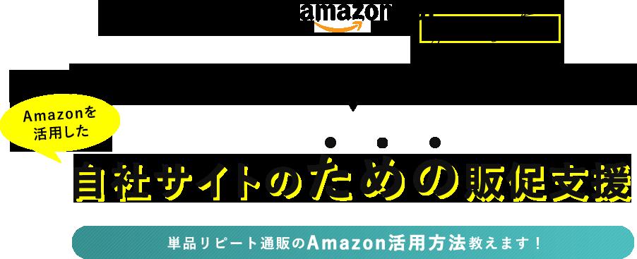 単品リピート通販 Amazonの販促支援サービス